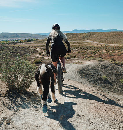 A girl on her bike riding ahead of a dog following closely behind on a California trail..