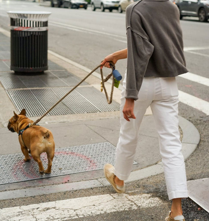 A woman walking her dog in the city.