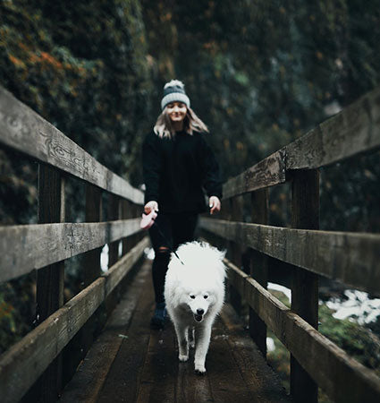 A girl walking her dog on a pedestrian bridge in the mountains