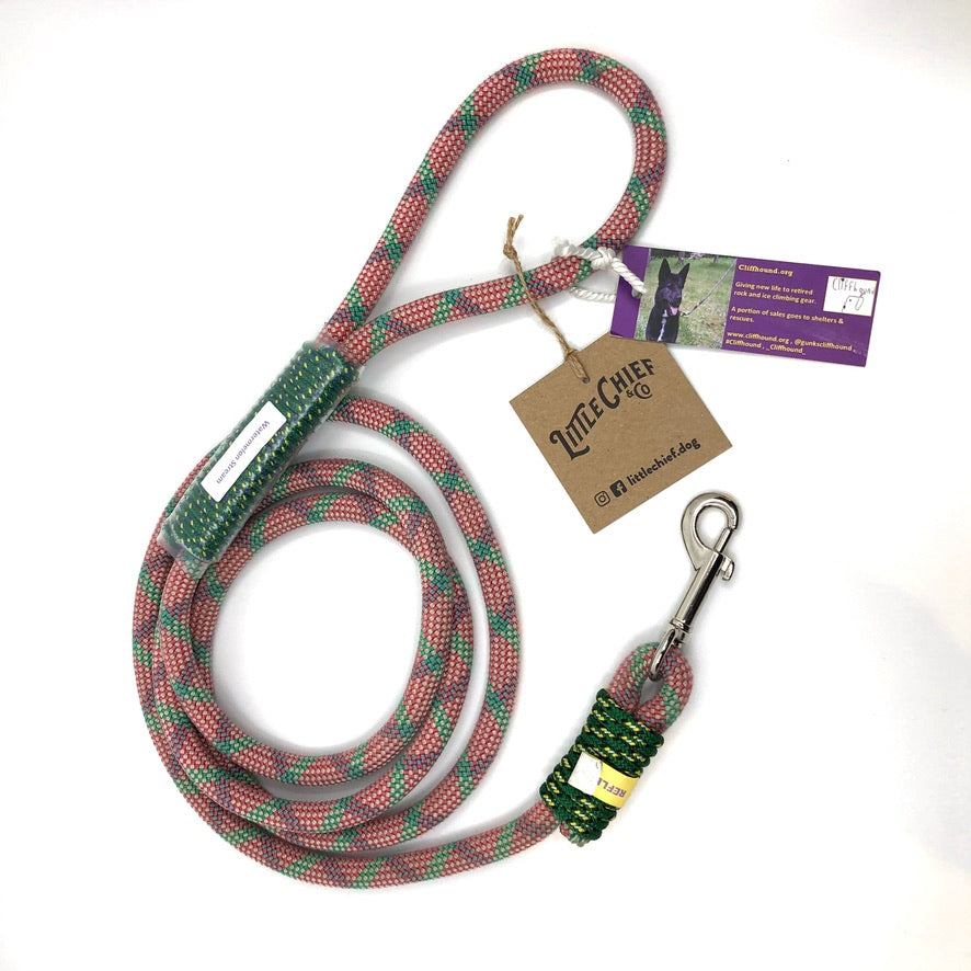 6 ft Leash
