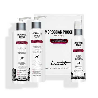 Moroccan Pooch Hydration Essentials