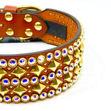 Crazy Rebels Leather Obsession Collar