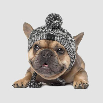 Polar Pom Pom Hat - Grey
