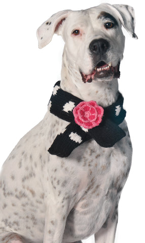 Chilly Dog Polka-Dot with Flower Scarf