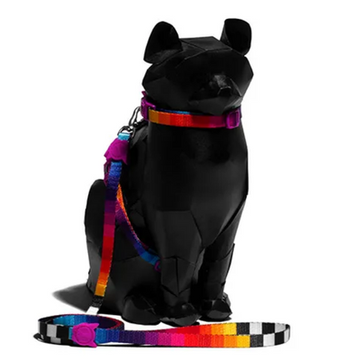 Zee.Cat Harness & Leash Combo - Prisma