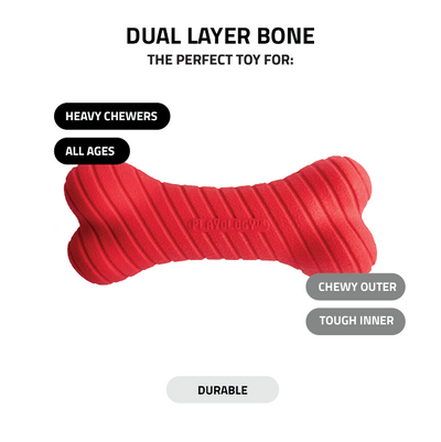 Dual Layer Bone - Beef Scented