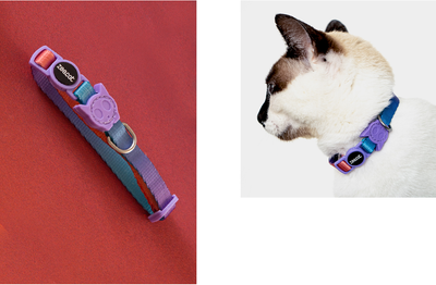 Zee.Cat Gradient Collars