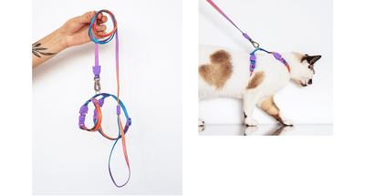 Zee.Cat Harness & Leash Combo Gradient Collection