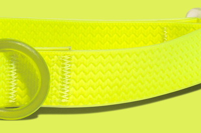 NEOPRO Dog Collar - Lime Green