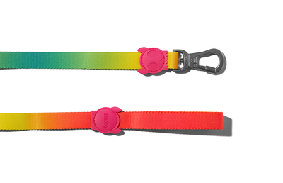 Zee.dog Gradient Leash - Citrus