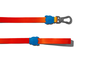 Zee.dog Gradient Leash - Solaris