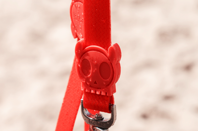 NEOPRO Dog Leash - Coral
