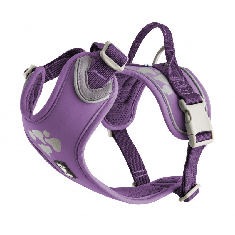 Weekend Warrior Harness - Currant