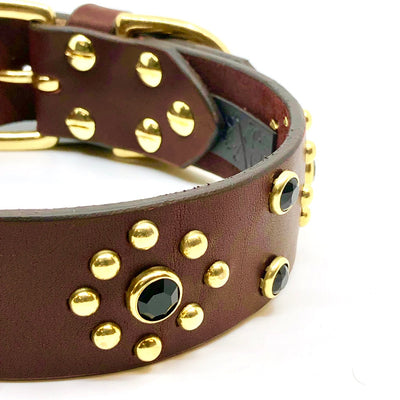 Leather Eclipse Collar