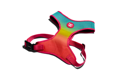 Zee.Dog Air Mesh Harness - Citrus