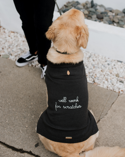 "'Will Work for Scratches"" Sweater"