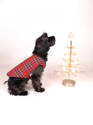 Boy Coat Tartan - Red
