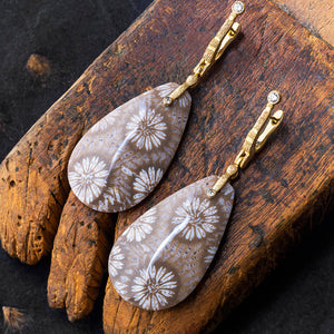 Fossil Coral and Gold Earrings by Alex Sepkus
