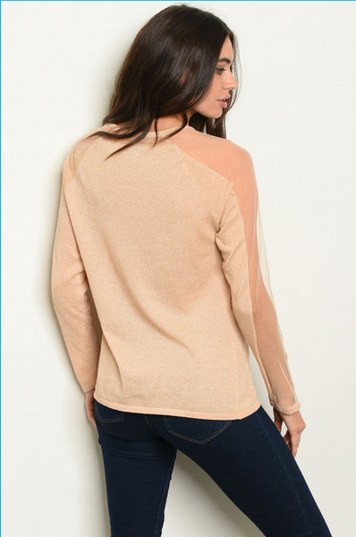 Sheer Long Sleeve Blouse