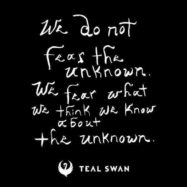 Fear The Unknown Quote - Art Print