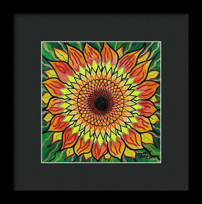 Sunflower - Framed Print