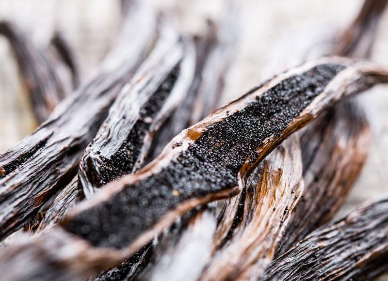 Take your taste buds on a culinary adventure with Tahitensis Vanilla
