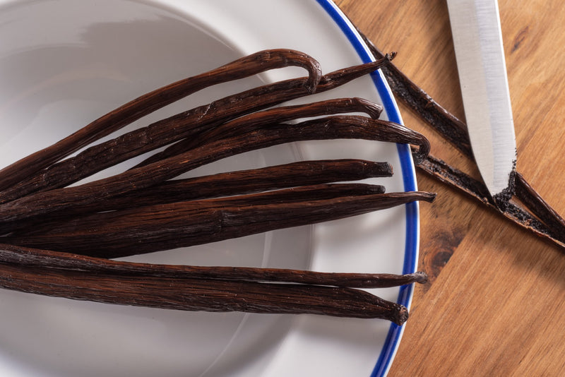 Vanilla Symposium Offers Hope to Future of Vanilla Production | Native Vanilla