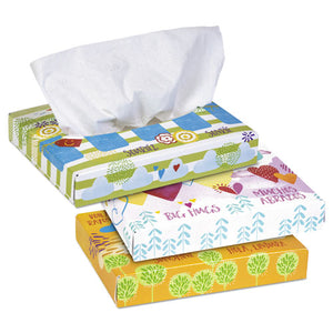 ESKCC21195 - WHITE FACIAL TISSUE JUNIOR PACK, 2-PLY, 40 TISSUES-BOX, 80 BOXES-CARTON