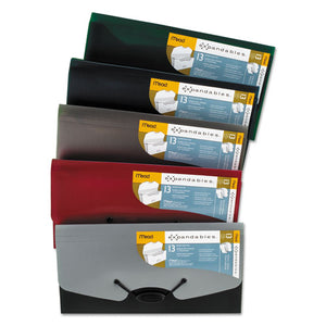 ESMEA35904 - Expandables 13-Pocket Expanding File, Check Size, Assorted