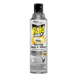 ESSJN695908EA - MAX FOAMING WASP AND HORNET KILLER, 13 OZ AEROSOL