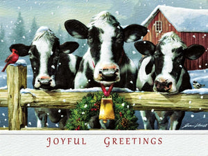 Pumpernickel Holstein Hello Boxed Christmas Cards