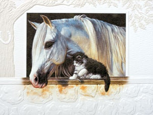 Pumpernickel Press Horse and Cat Individual Greeting Card