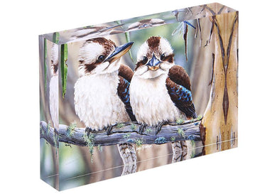 Fauna of Aus Kookaburras Mini Gallery