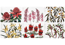 Load image into Gallery viewer, Aus Floral Emblems 6pk Placemat