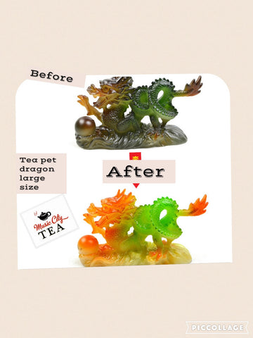 Tea Pet (Dragon For Sale) #13