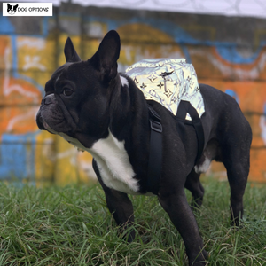 Monogram LV Reflective Dog Backpack-Dog Options