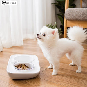 Clean Design Automatic Pet Bowl-Dog Options