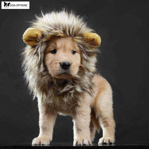 Lion Mane For Cat/Small dog-Dog Options