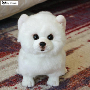 Pomaterian Plush Dog Doll-Dog Options
