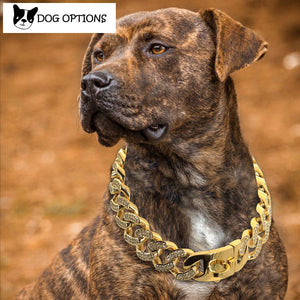 Miami Rhinestone - Strong Metal Big Dog Chain Collars Stainless Steel
