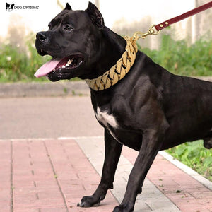 Metal Dog Chain Collars
