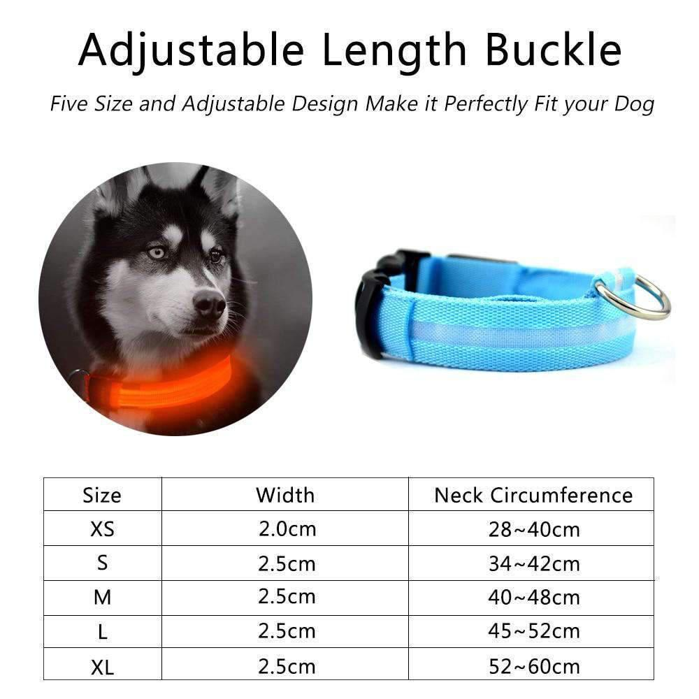 Glow In The Dark Nylon LED dog collars-Dog Options