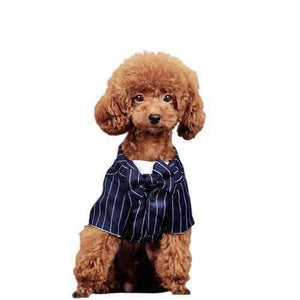 BRITISH STYLE STRIPED DOG SUIT FOR SMALL DOG-Dog Options