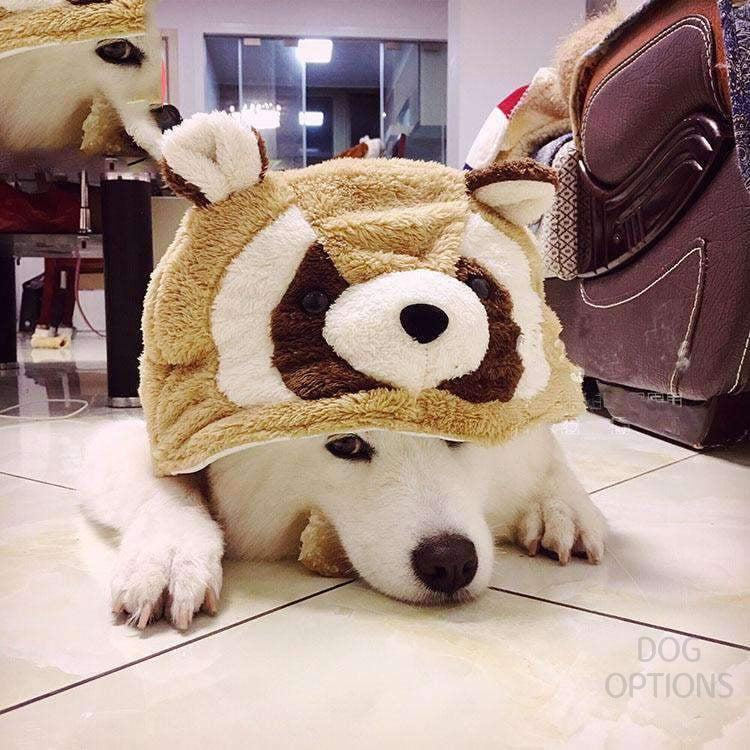 Cute Red Panda Dog Costumes For Large Size-Dog Options