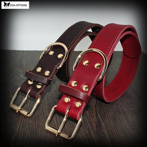 Personalized Leather Dog Collar