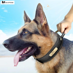 K9 Personalized Leather Collar With Handle-Dog Options