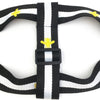 PUCCI GOLD DRAGONFLY HARNESS&LEASH SET