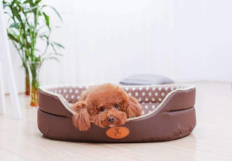 Double Sided Soft Dog Bed-Dog Options