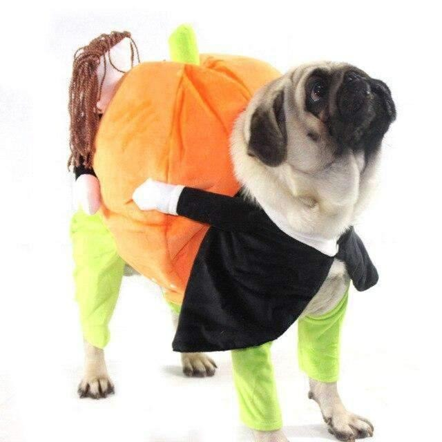 Pumpkin Halloween Dog Cosplay-Dog Options