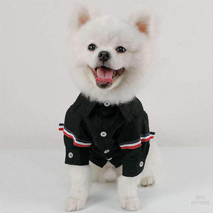 Oppa Korea Style Dogs Shirt-Dog Options